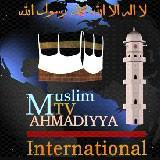 Logo-MTA International.jpg