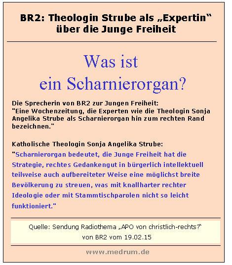 Sonja Angelika Strube - Scharnierorgan.jpg