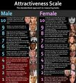 Attractiveness Scale - Male - Female.jpg