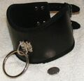 Leather posture collar with O-ring.jpg