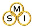 Logo - MSI.png