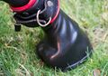 Pony play - Hoof mitten locked with leather cuff.jpg