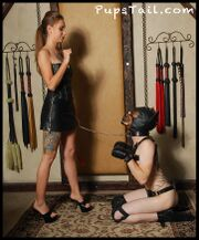 PupsTail - The Dog Trainer - 2.jpg