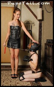 PupsTail - The Dog Trainer - 3.jpg